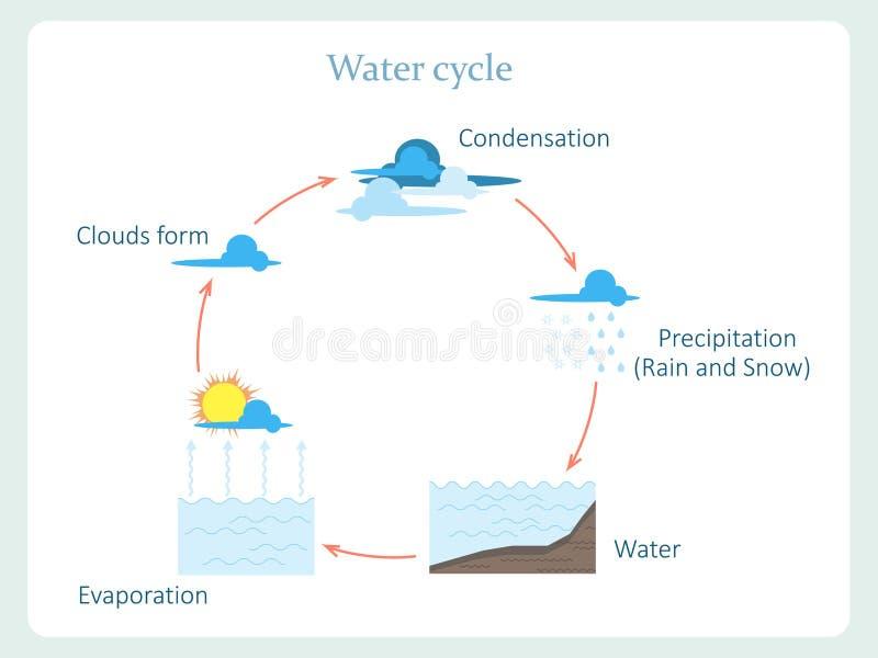 Conosciuto Schema Del Ciclo Dell'acqua Per Istruzione Dei Bambini  ID15
