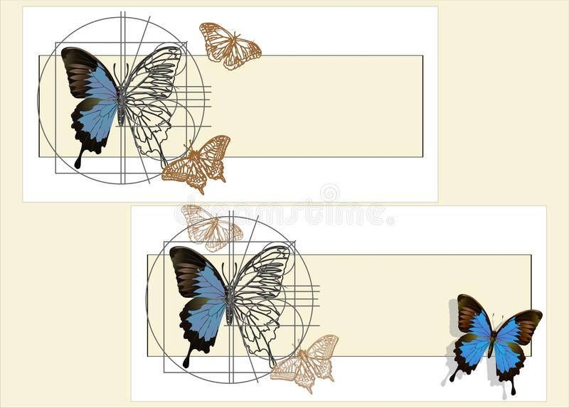 A schematic drawing of a butterfly. The outline of a butterfly on old paper stock illustration