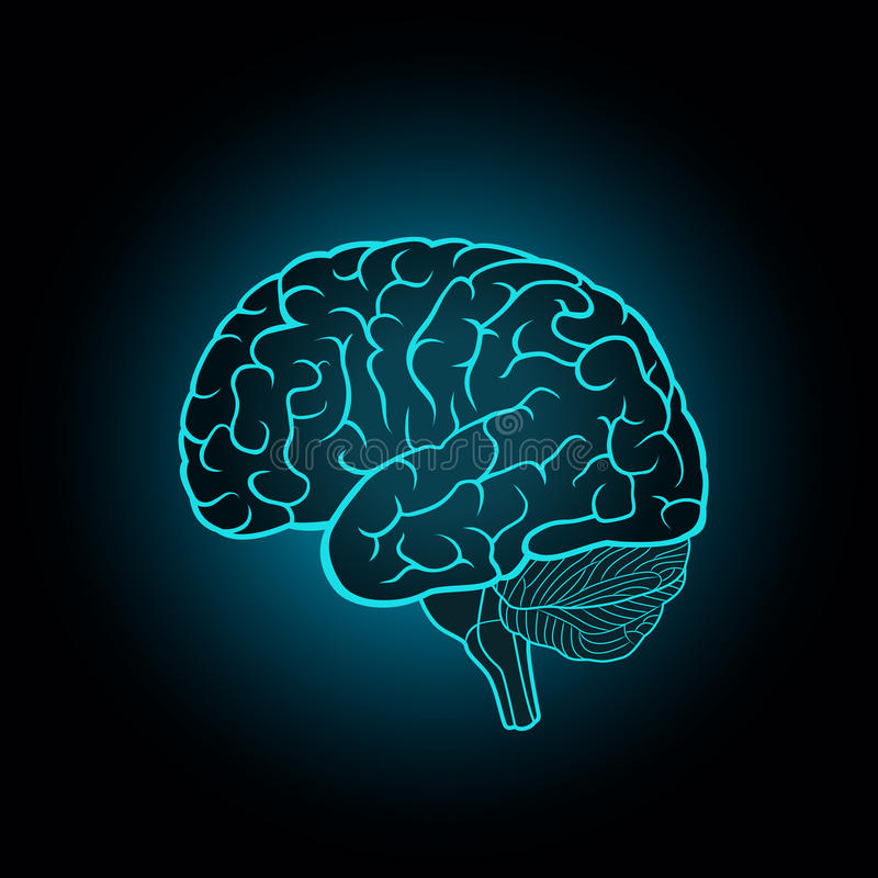 Free Schematic Illustration Of Human Brain On A Dark Blue Background Royalty Free Stock Photo - 92896655