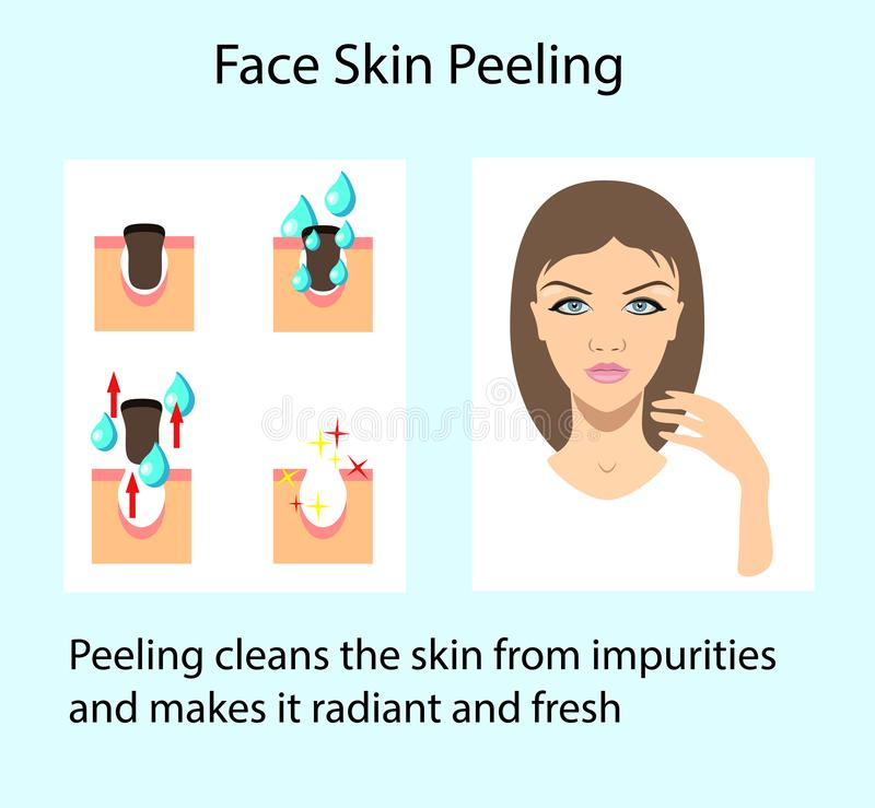 Cleansing skin process, vector illustration isolated on the light background. Scheme of Cleansing skin process, vector illustration isolated on the light vector illustration
