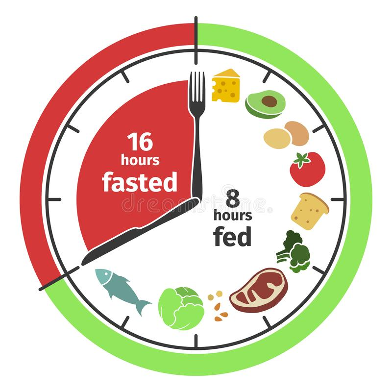 Scheme and concept of Intermittent fasting. Clock face symbolizing the principle of Intermittent fasting. Vector. Scheme and concept. Clock face symbolizing the royalty free illustration