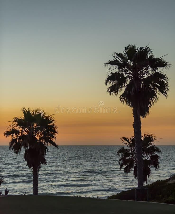 Schemerhemel over de Vreedzame Oceaan met palmsilhouet royalty-vrije stock foto's