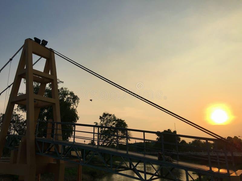Schemeringhemel in avond de hond bepaalt op de brug stock fotografie