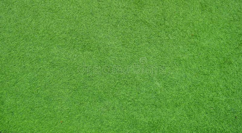 Schermo dell'erba verde per fondo fotografia stock libera da diritti