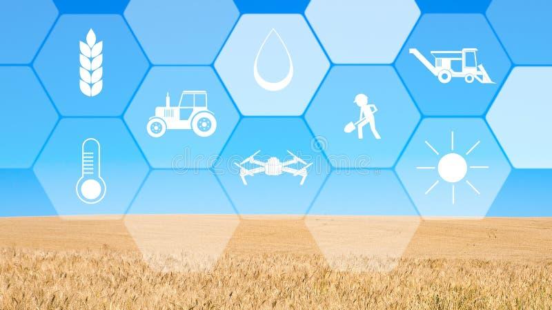 Schermo virtuale con il fondo digitale delle icone, del cielo blu e del campo fotografia stock