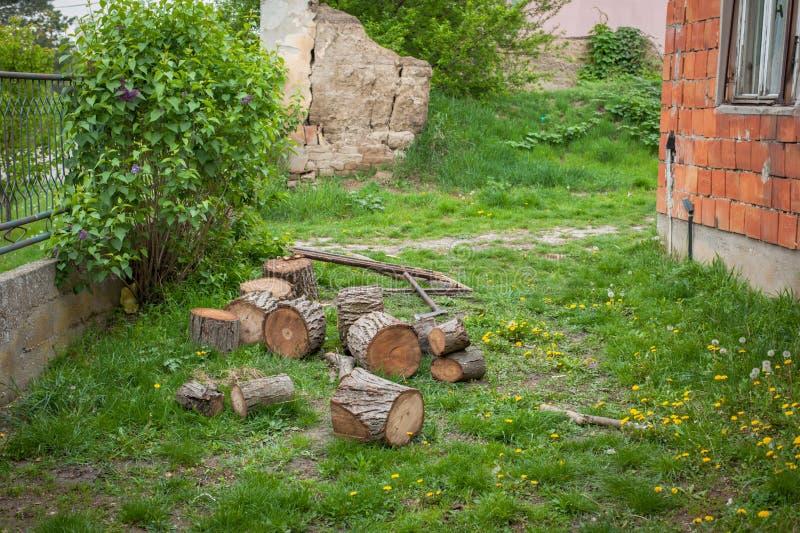 Scherp hout in aard op een groen gazon Boom en een bijl royalty-vrije stock afbeeldingen