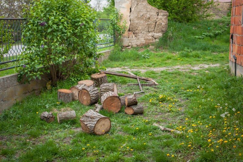 Scherp hout in aard op een groen gazon Boom en een bijl stock afbeeldingen