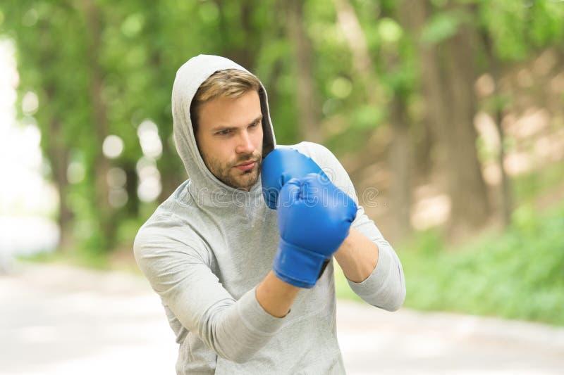 Scherp zijn vaardigheid Sportman geconcentreerde opleidings bokshandschoenen Atleet geconcentreerde de handschoenenpraktijk van d stock fotografie