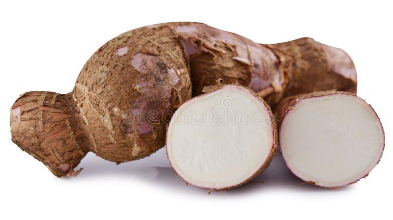 Scherpe en gehele die maniok (maniok) op witte achtergrond wordt geïsoleerd stock foto