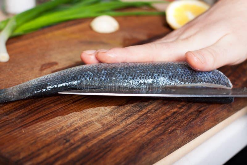 Scherpe vissen stock afbeelding
