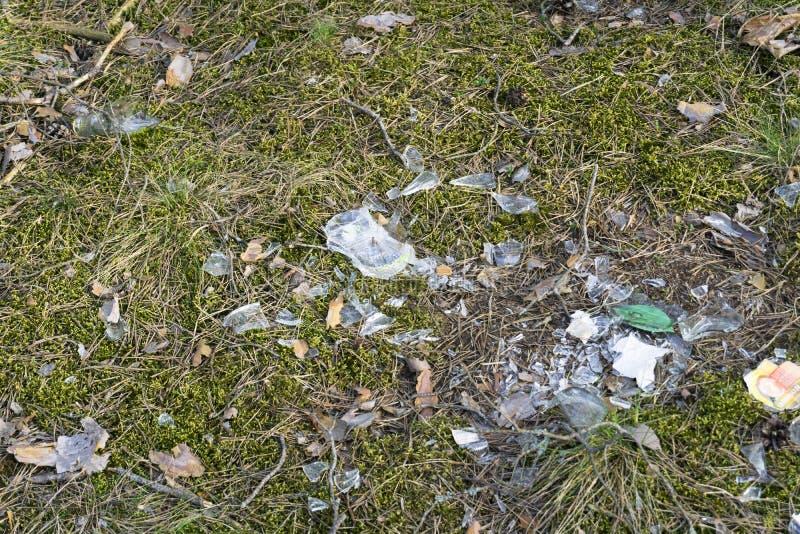 Scherven van gebroken glas op de mosgrond in het bos stock foto's