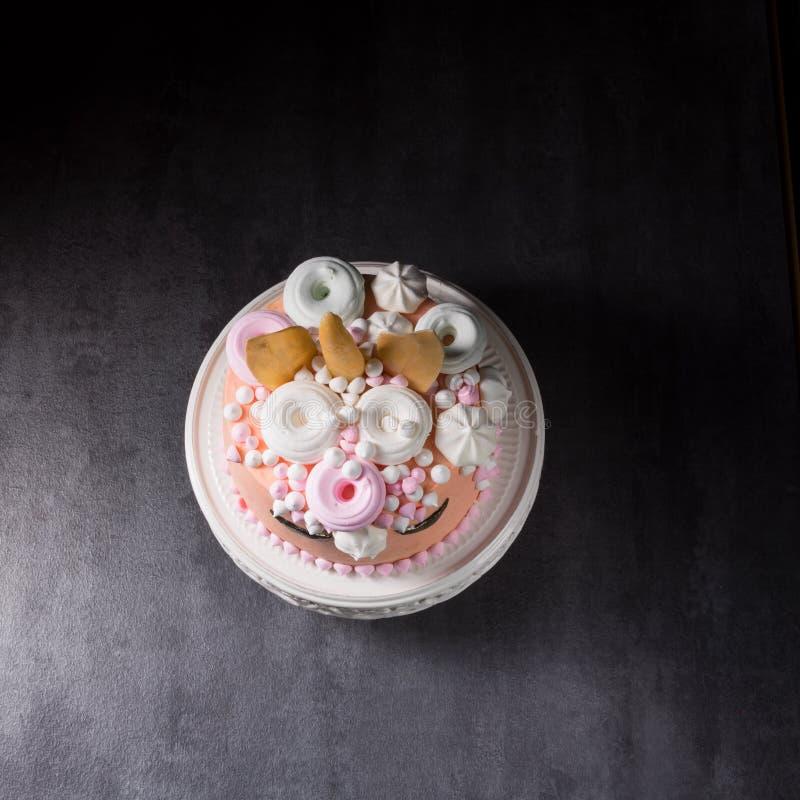 Scherza la torta di compleanno immagini stock libere da diritti