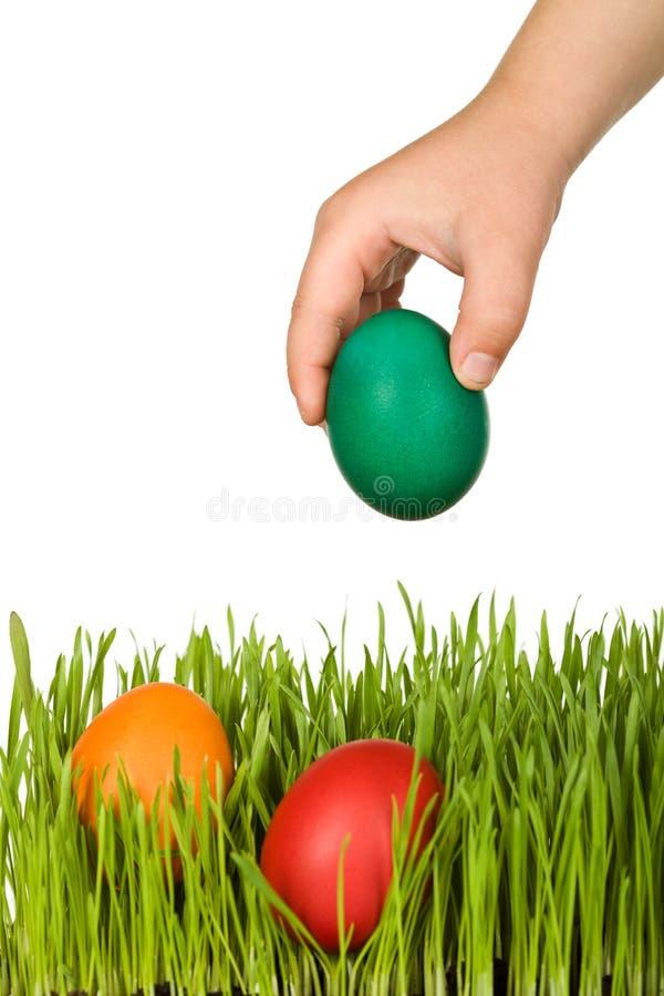 Scherzen Sie die Hand, die Ostereier in das Gras einsetzt stockbilder