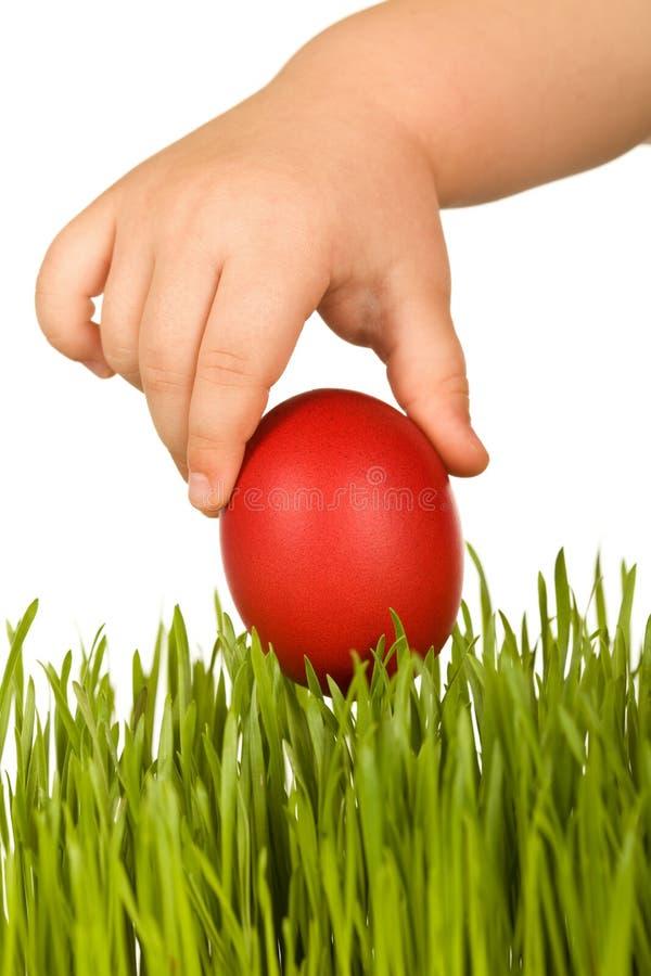 Scherzen Sie die Hand, die rotes Osterei über grünem Gras anhält lizenzfreie stockbilder