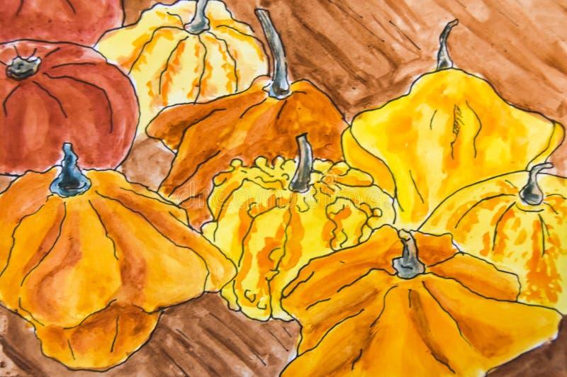 Schets die heel wat verschillende gekleurde pompoenen trekken stock fotografie