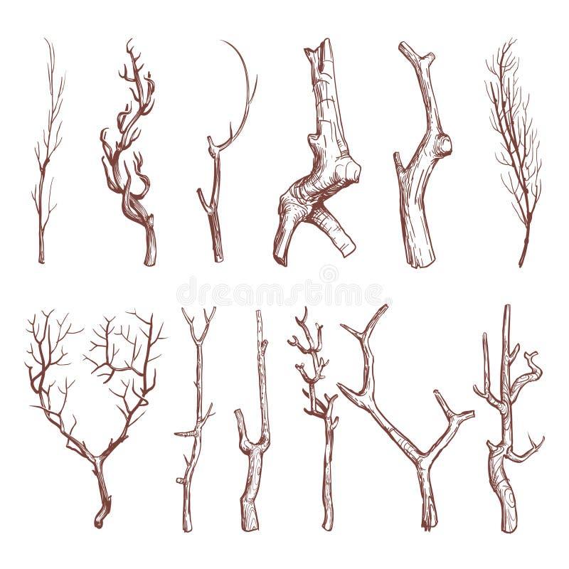 Schets houten takjes, de gebroken vectorreeks van boomtakken stock illustratie