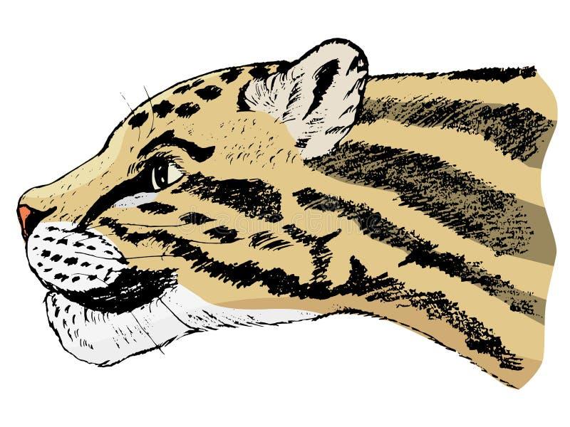 Schets van betrokken luipaard royalty-vrije illustratie