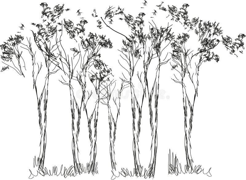 Schets van bomen stock illustratie