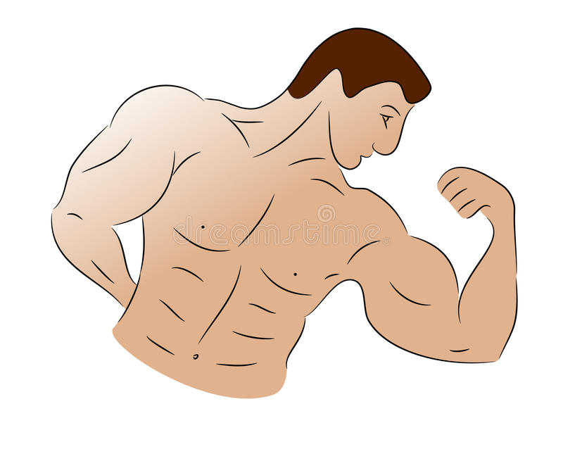 Schets van een Bodybuilder stock illustratie