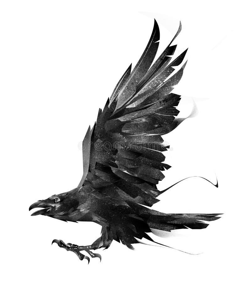 Schets van een vliegende vogelraaf op wit zijaanzicht als achtergrond royalty-vrije illustratie