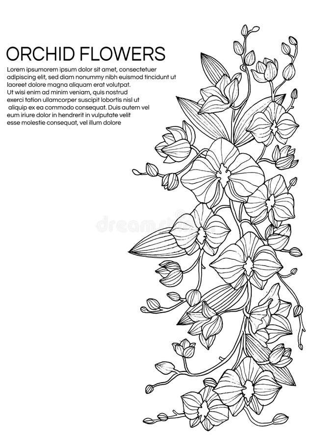 Schets van Hand-drawn orchideebloemen, de kaart van de ontwerpgroet en uitnodiging van vakantie stock fotografie