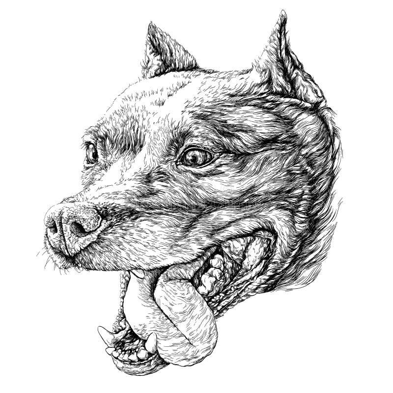 Schets van Hondstaffordshire terriër Vector illustratie vector illustratie