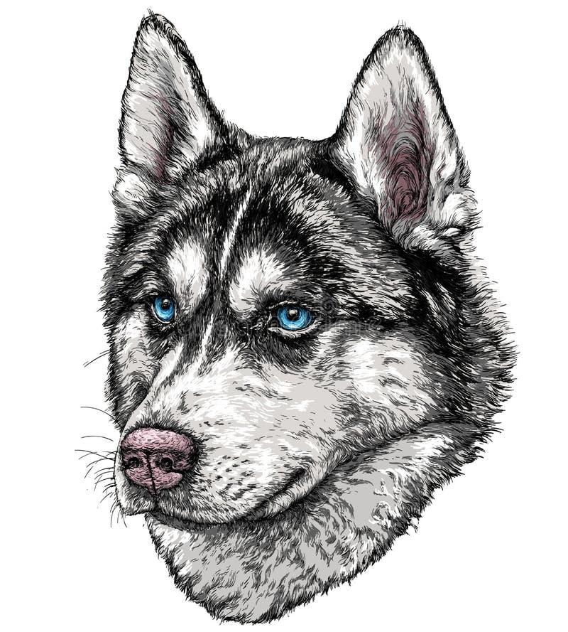 Schets van Husky Dog vector illustratie