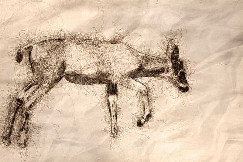 Schets van Jong Buck Deer Making Its Way omhoog de Grasrijke Heuvel royalty-vrije illustratie