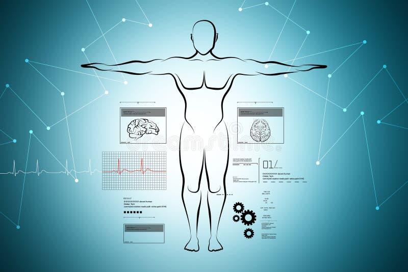 Schets van menselijk lichaam stock illustratie