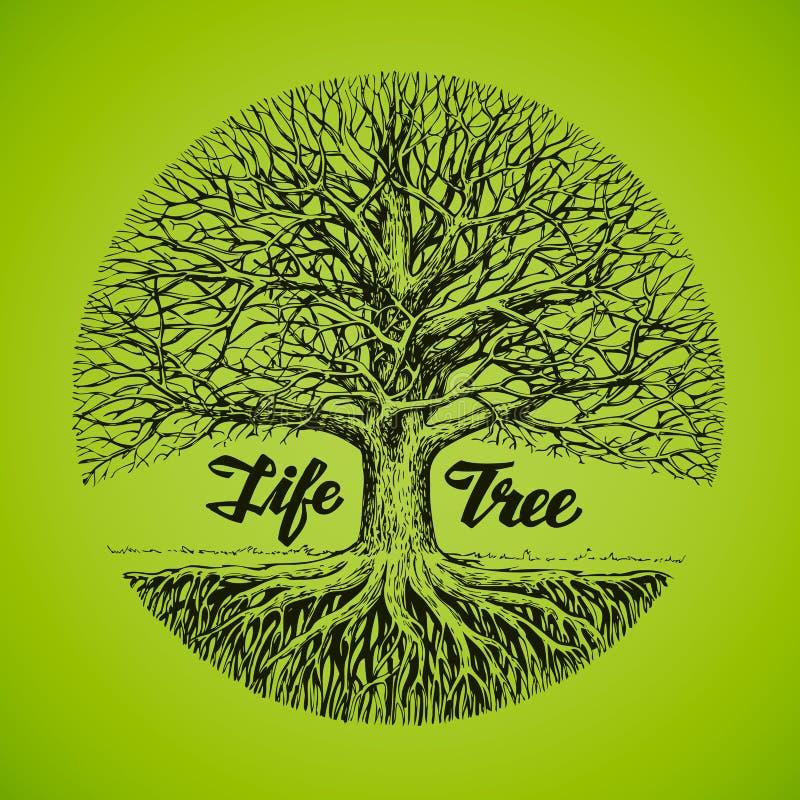 Schetsboom met wortels Ecologie, milieu nave royalty-vrije illustratie
