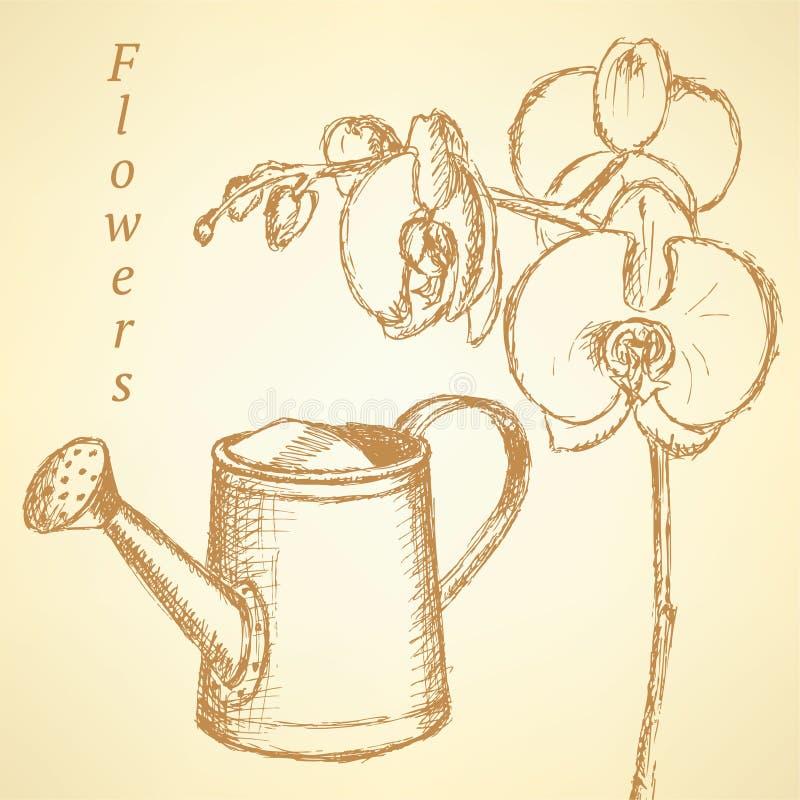 Schetsorchidee en gieter, achtergrond stock illustratie