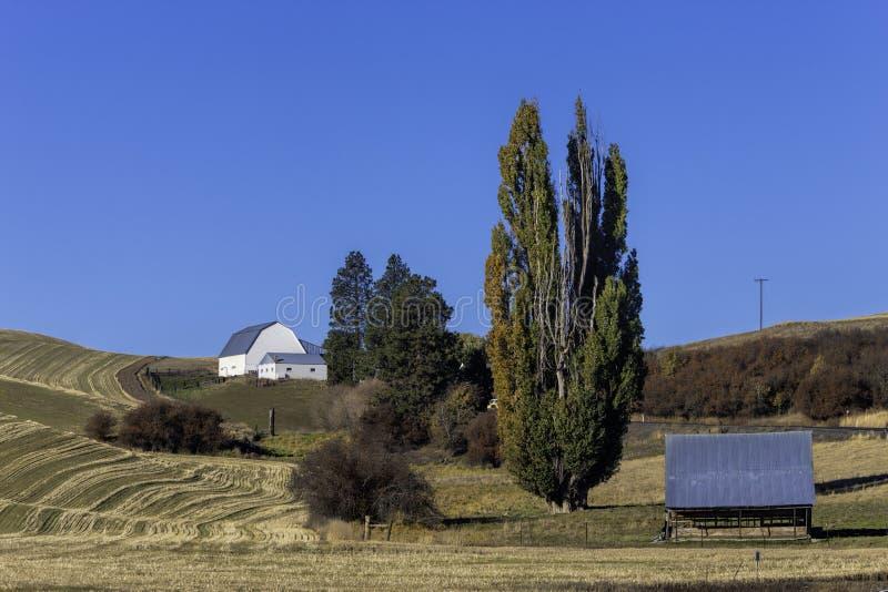 Scheune auf Hügel im Palouse. stockbild