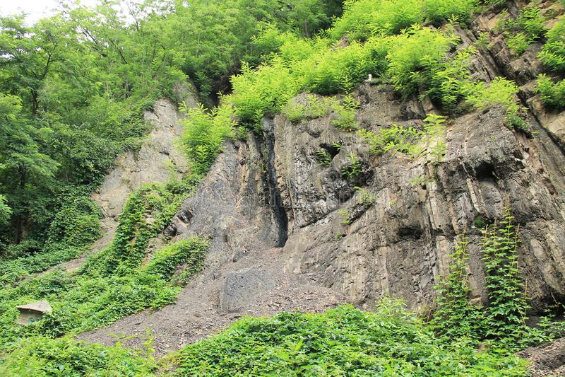 Schicht Kohle im Felsen stockbild
