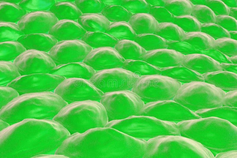 Schicht menschliche Zellen stock abbildung