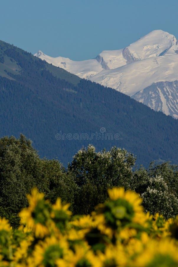 Schichten der Natur: Felder, Wälder und Berge stockbild