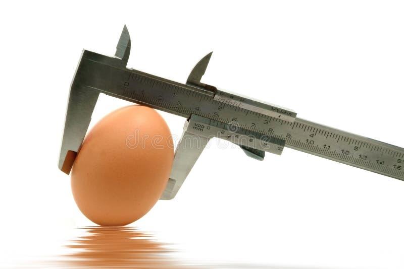 Schieber, der das Ei misst lizenzfreie stockbilder