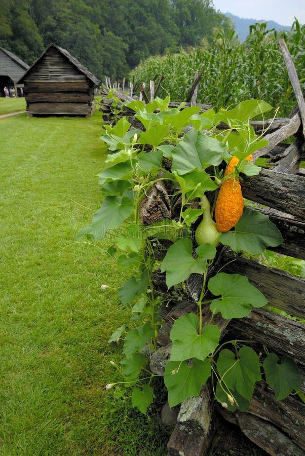 Schienen-Zaun und Stall auf Bauernhof lizenzfreie stockfotografie