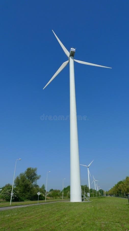 Schiera del mulino a vento fotografia stock