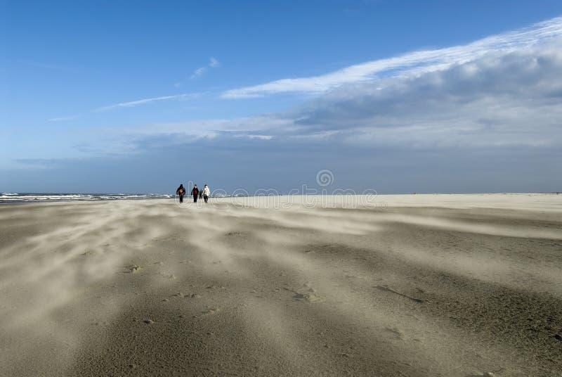 schiermonnikoog пляжа бурное стоковое изображение rf