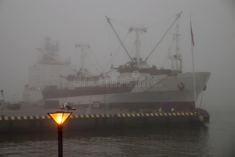 Schiff am Liegeplatz im dichten Nebel Eine Seemöwe sitzt auf der Laterne auf dem Hintergrund des Schiffs im Nebel Hafen im Nebel stockbilder