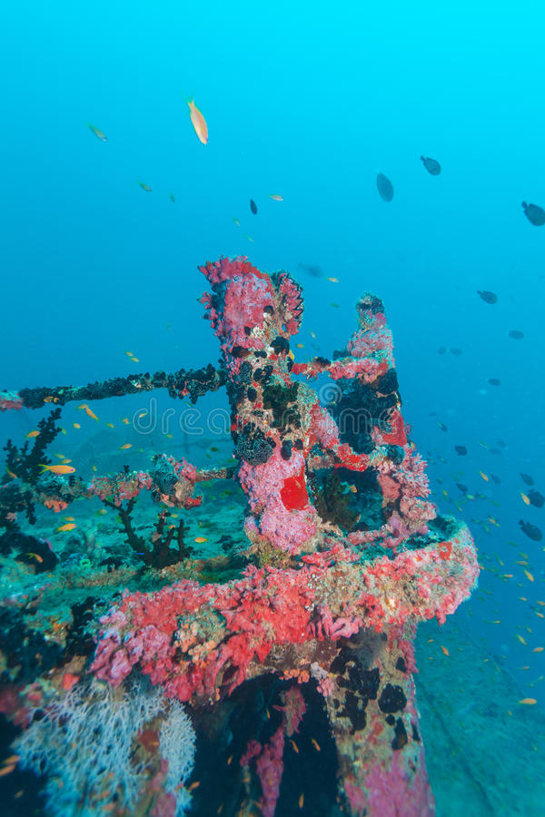 Schiffbruch im Ozean-Blau, Malediven stockfoto
