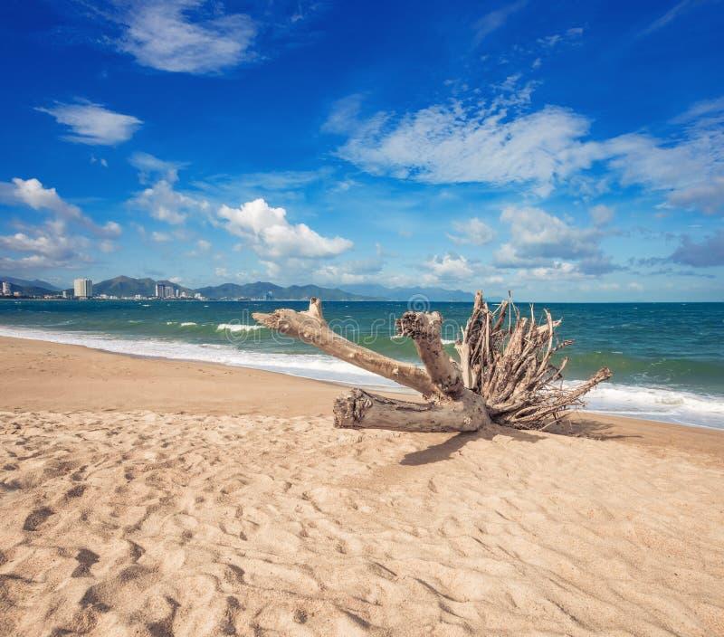 Schijnbaar mooi uitzicht op het strand van Nha Trang royalty-vrije stock afbeeldingen