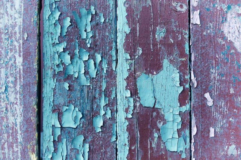 Schil violette en turkooise verf op oud doorstaan hout - geweven achtergrond royalty-vrije stock foto