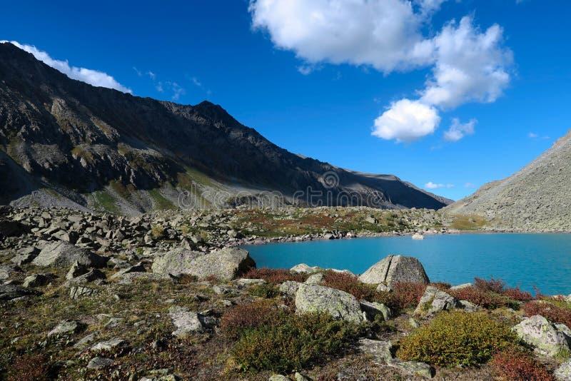 Schilderachtig blauw bergmeer Altaibergen, Siberi?, Rusland royalty-vrije stock foto's