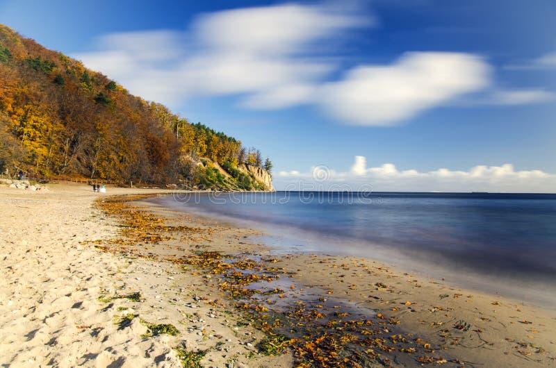 Schilderachtig landschap van klip in orlowo van Gdynia op Oostzee in Polen royalty-vrije stock foto's