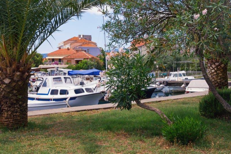Schilderachtig Mediterraan landschap Rode daken van kuststad en vissersboten in haven van groen park Montenegro, Tivat-stad royalty-vrije stock foto