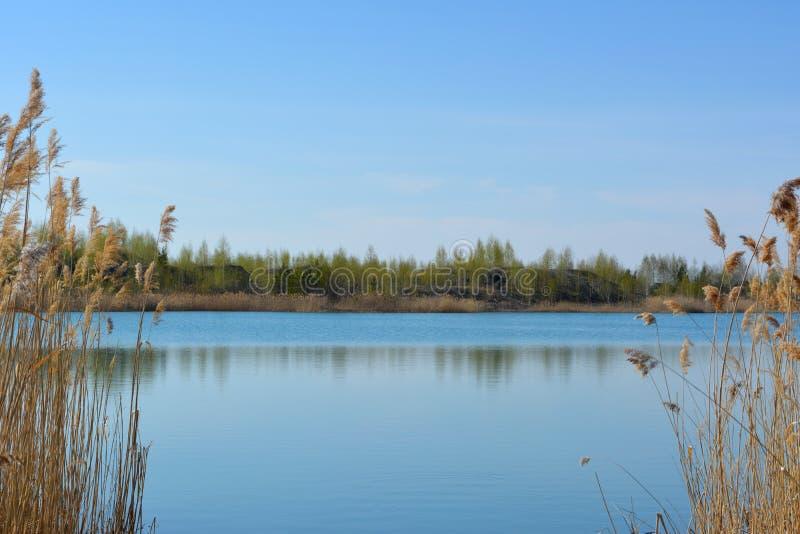 Schilderachtig Russisch landschap Weergeven van het meer met duidelijk blauw water tussen het struikgewas van droog riet royalty-vrije stock afbeeldingen
