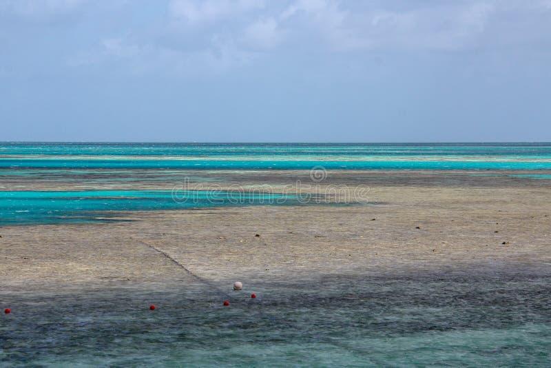 Schilderachtige blauwe oceaan op Groot Barrièrerif stock foto's