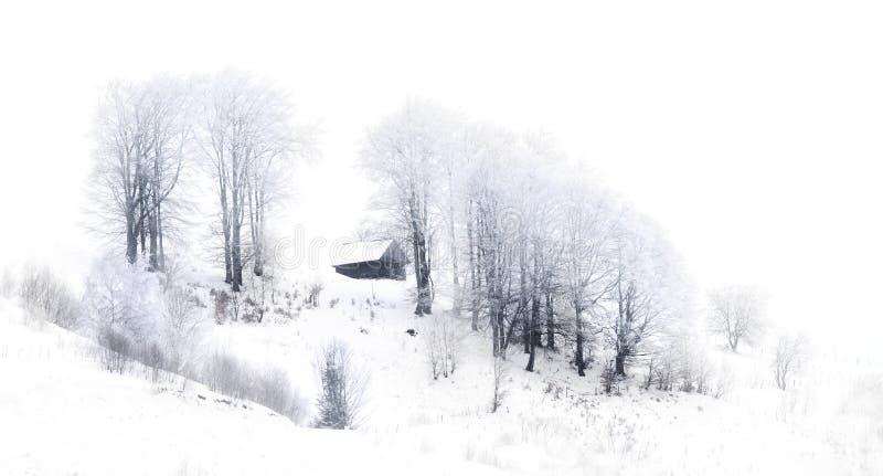 Schilderachtige de winterscène royalty-vrije stock afbeeldingen