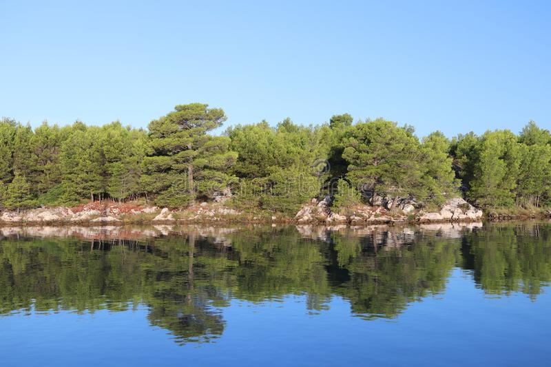Schilderachtige die baai door groen van een naald bosrust en een rust na overzeese kruising wordt omringd Kroatische Riviera op A royalty-vrije stock afbeelding